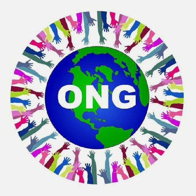 Coordinadores y Jefes de equipo ONG