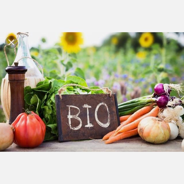 Practicas de agricultura ecológica previo curso gratuito