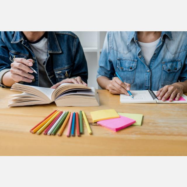 Profesor/a para dar clases particulares - distintas materias