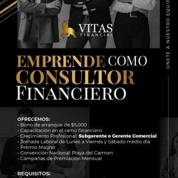 Asesor/a Financiero
