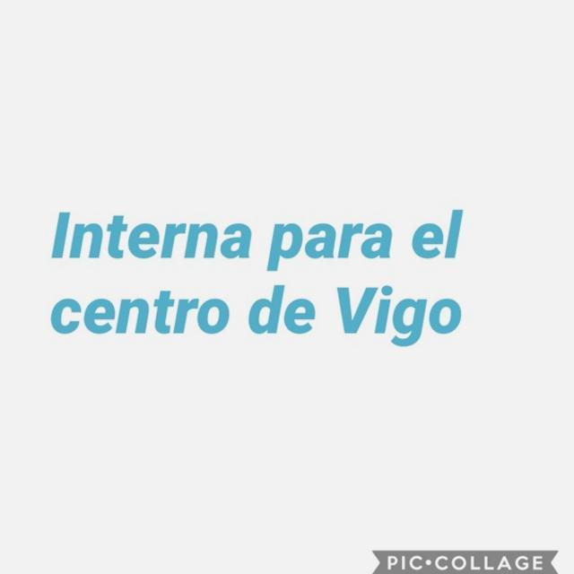 Interna profesional Vigo