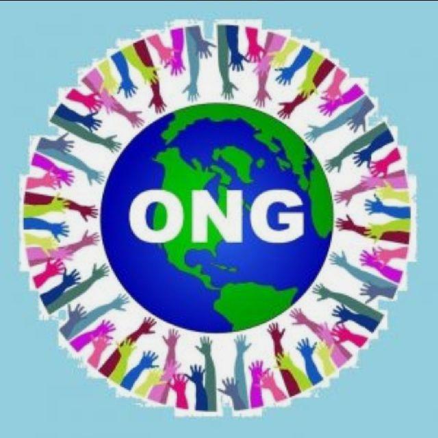 Coordinador/a ONG