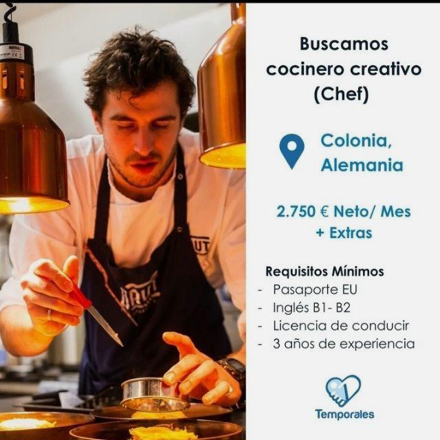 Cocinero chef Para HOLANDA
