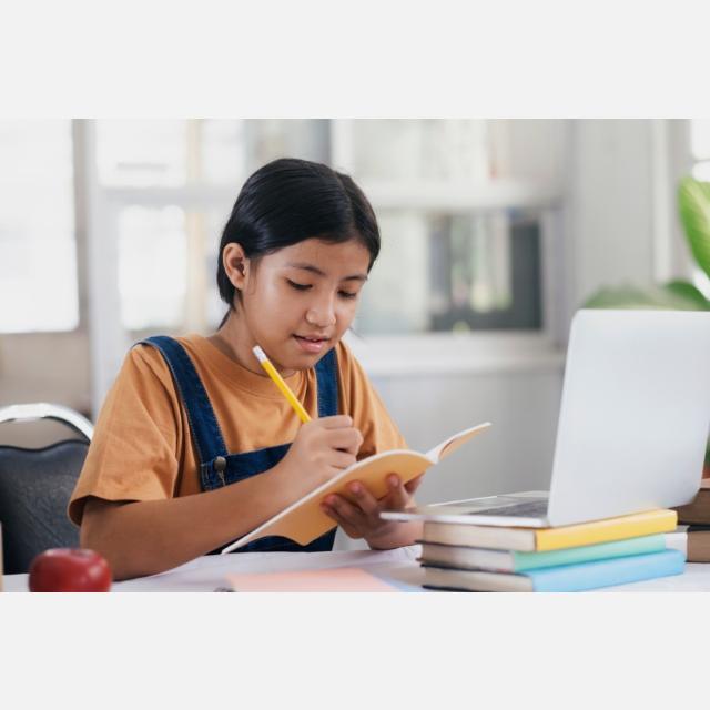 Profesor/a de Ingles Online