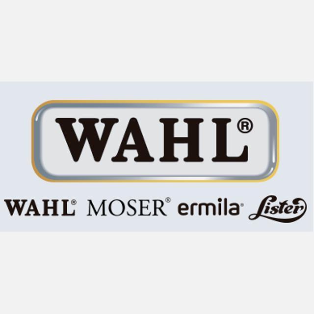 Responsable de educación peluquería profesional Grupo Wahl