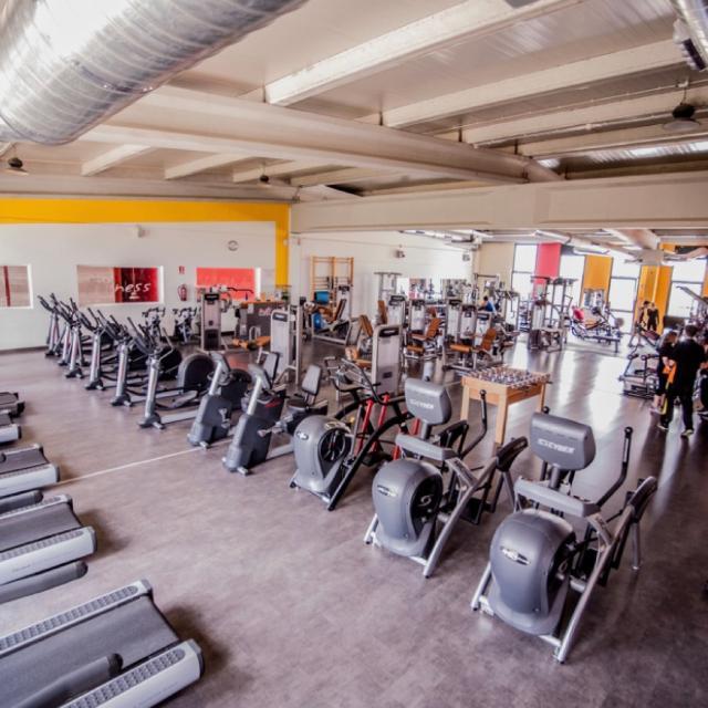 Técnico Polivalente (Sala Fitness + Colectivas)