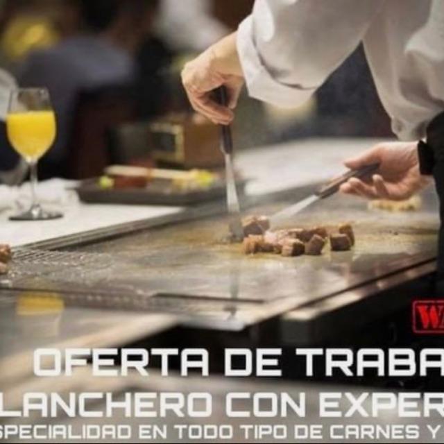 Cocinero/a Planchista