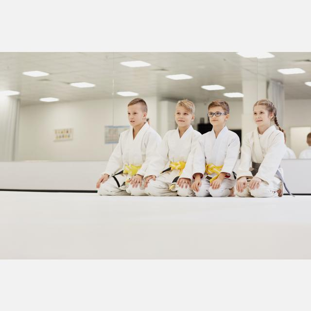 Profesor/a de Karate