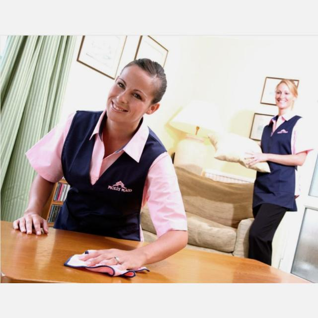 Domestic Cleaner and Route Manager
