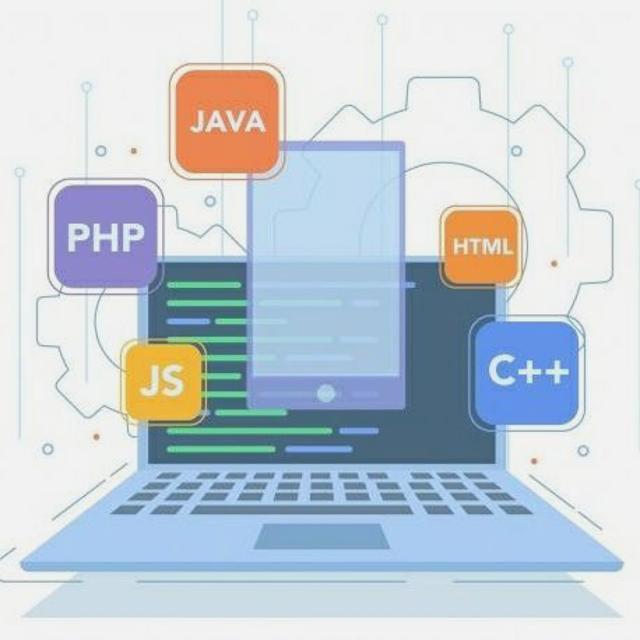 Programador/a
