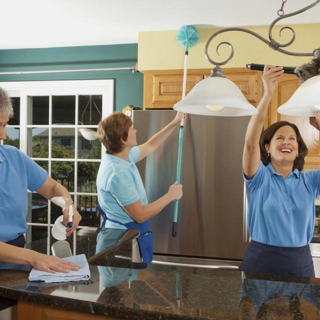 Domestic cleaning & ironing