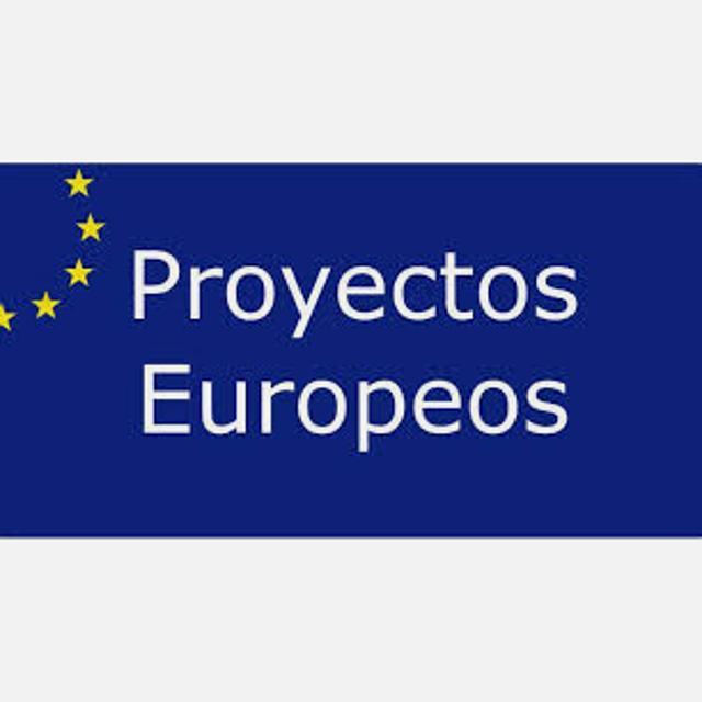 Coordinador de proyectos europeos