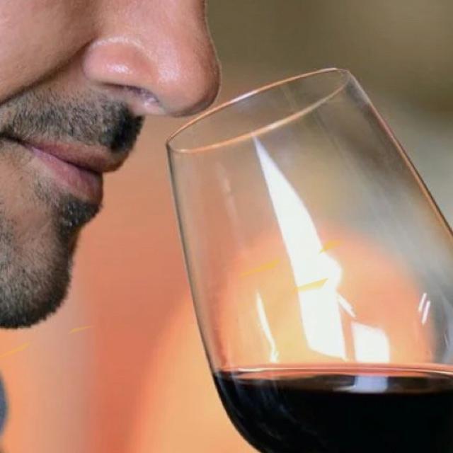 Dependiente/a experto en vino y cervezas
