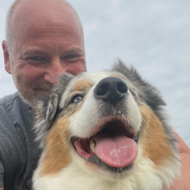 Dog Walker driver