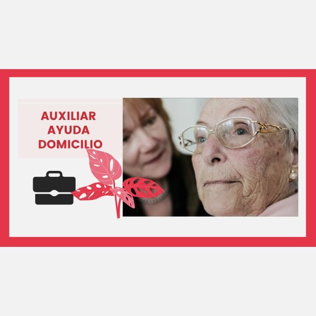 AUXILIAR AYUDA DOMICILIO