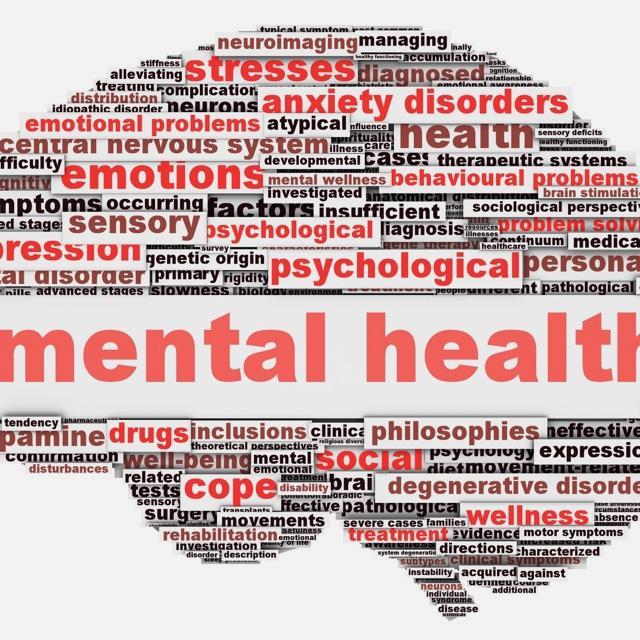 ONLINE COURSE - Mental Health Problems