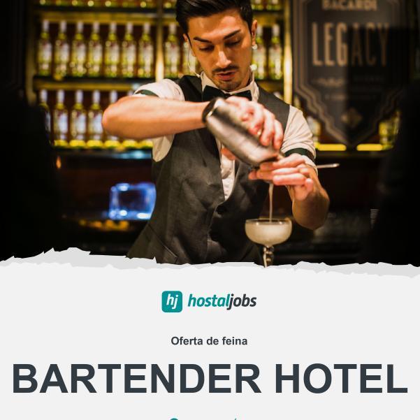 Barman - Bartender Hotel