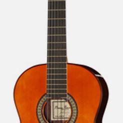 Profesor/a de Guitarra