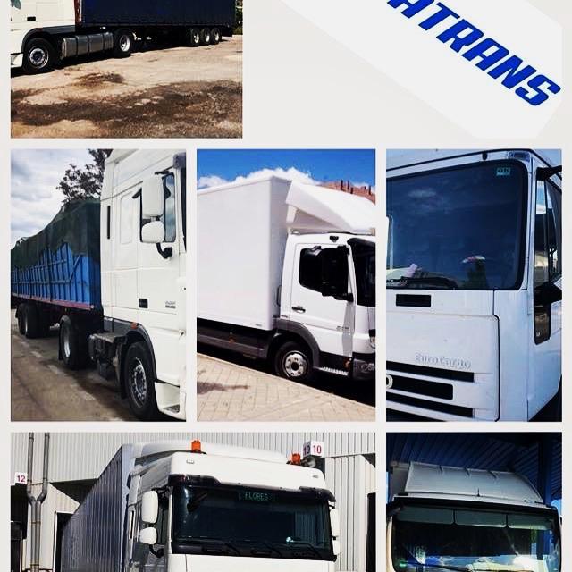 Conductor camión carnet C