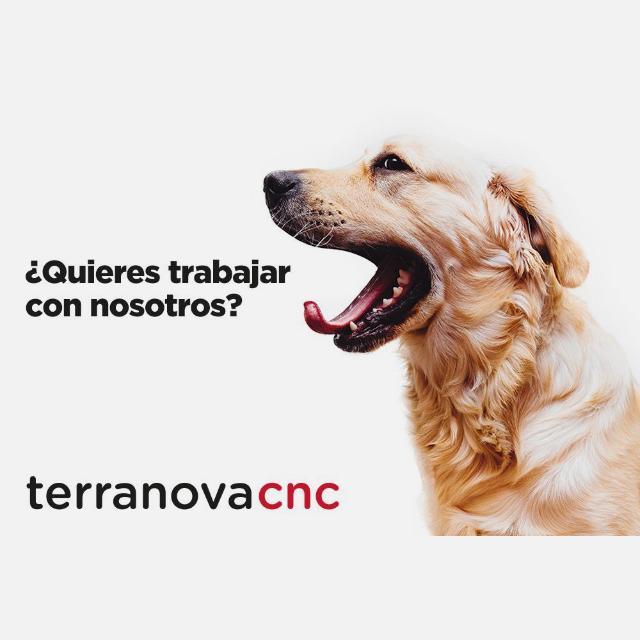Peluquer@ canino para VILANOVA I LA GELTRÚ