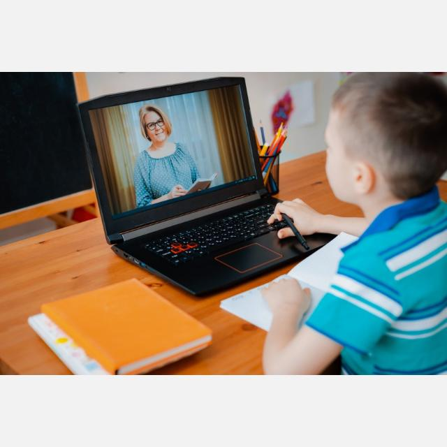 Profesor/a online de refuerzo